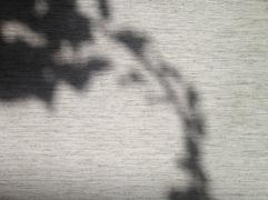 20120921-164042.jpg